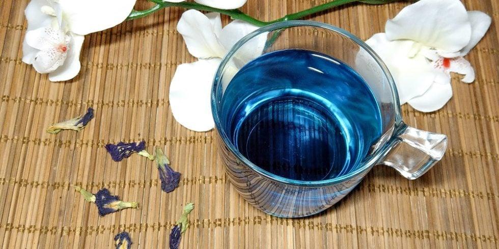 Blauer Tee - Butterfly Pea Tea - Schessy