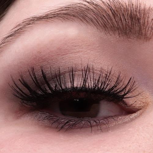 COLORICON Eyeshadow von wet n wild AMU